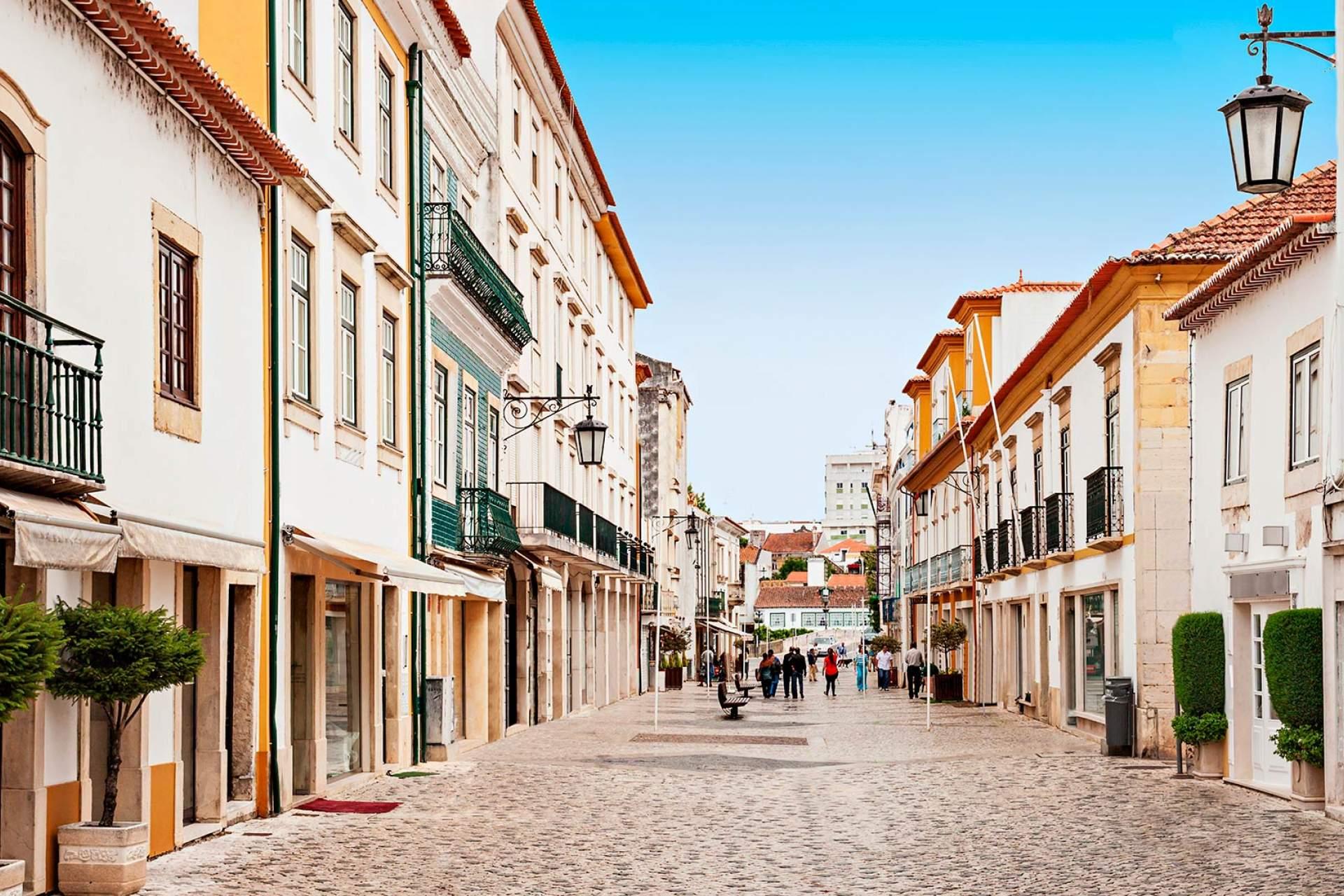 Rua em Tomar / Tomar / saiko3p_Shutterstock